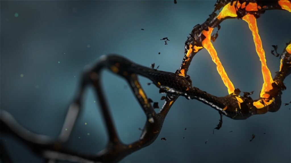 Advances in anti-aging research could prevent natural genomic instability